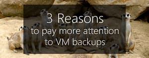 pay attention to vm backups