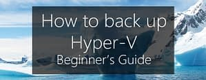 How to backup Hyper-V